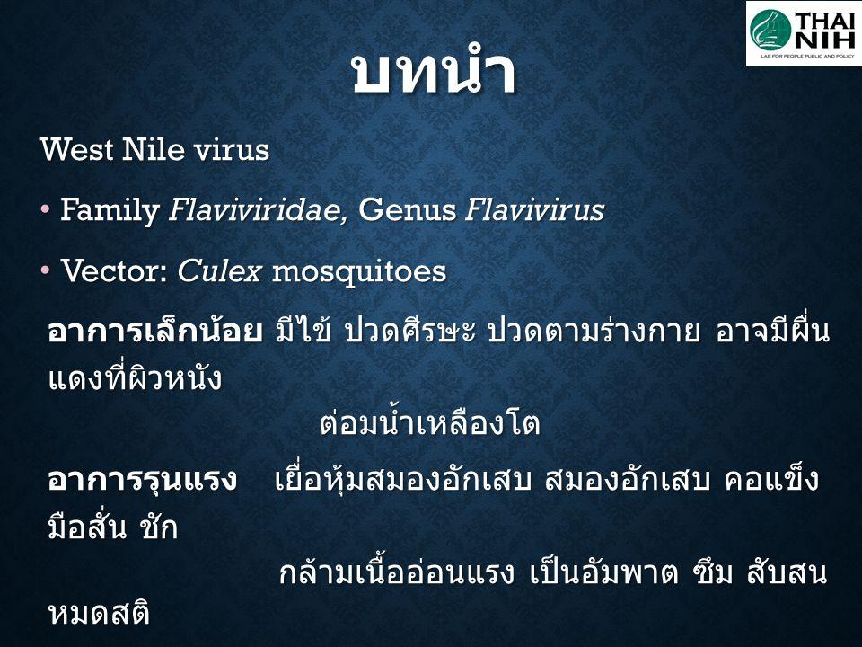 บทนำ West Nile virus Family Flaviviridae, Genus Flavivirus Family Flaviviridae, Genus Flavivirus Vector: Culex mosquitoes Vector: Culex mosquitoes อาก