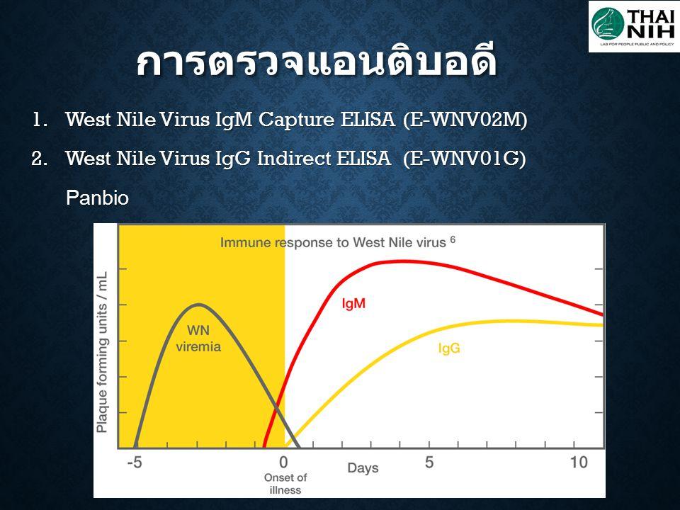 การตรวจแอนติบอดี 1.West Nile Virus IgM Capture ELISA (E-WNV02M) 2.West Nile Virus IgG Indirect ELISA (E-WNV01G) Panbio Panbio