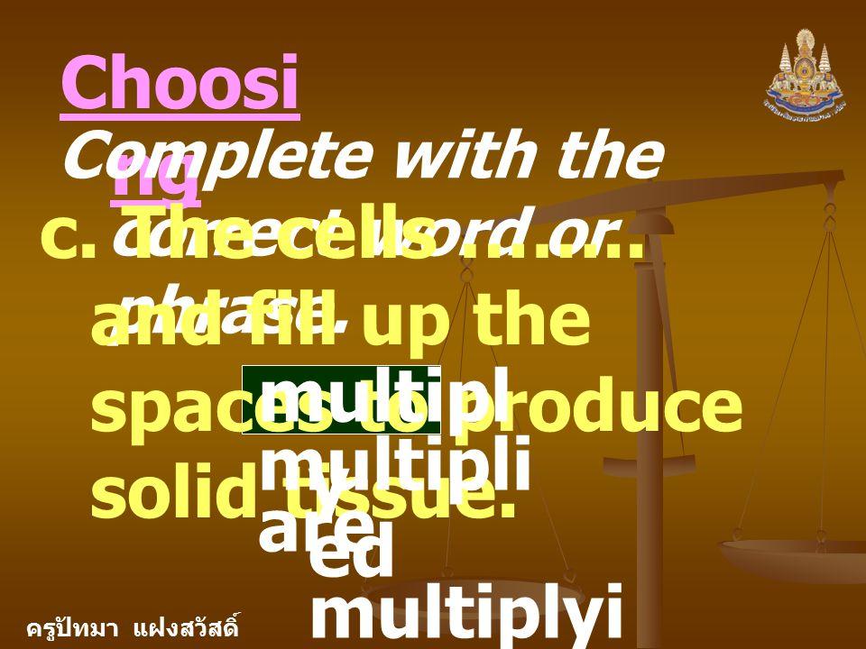 ครูปัทมา แฝงสวัสดิ์ Choosi ng Complete with the correct word or phrase.