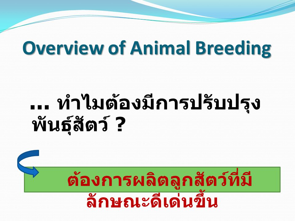 Animal Breeding : หลักการ ปรับปรุงพันธุ์สัตว์ 1) การคัดเลือกพันธุ์สัตว์ (Selection) Phenotypic selection Breeding value selection (Genetic) 2) การผสมพันธุ์สัตว์ (Mating) Inbreeding ( มีความเป็นเครือ ญาติกัน ) Cross breeding ( ไม่เป็นเครือญาติ / ผสมข้าม )