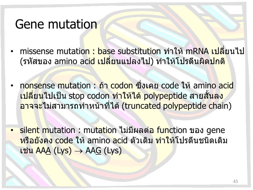 Gene mutation missense mutation : base substitution ทำให้ mRNA เปลี่ยนไป (รหัสของ amino acid เปลี่ยนแปลงไป) ทำให้โปรตีนผิดปกติ nonsense mutation : ถ้า