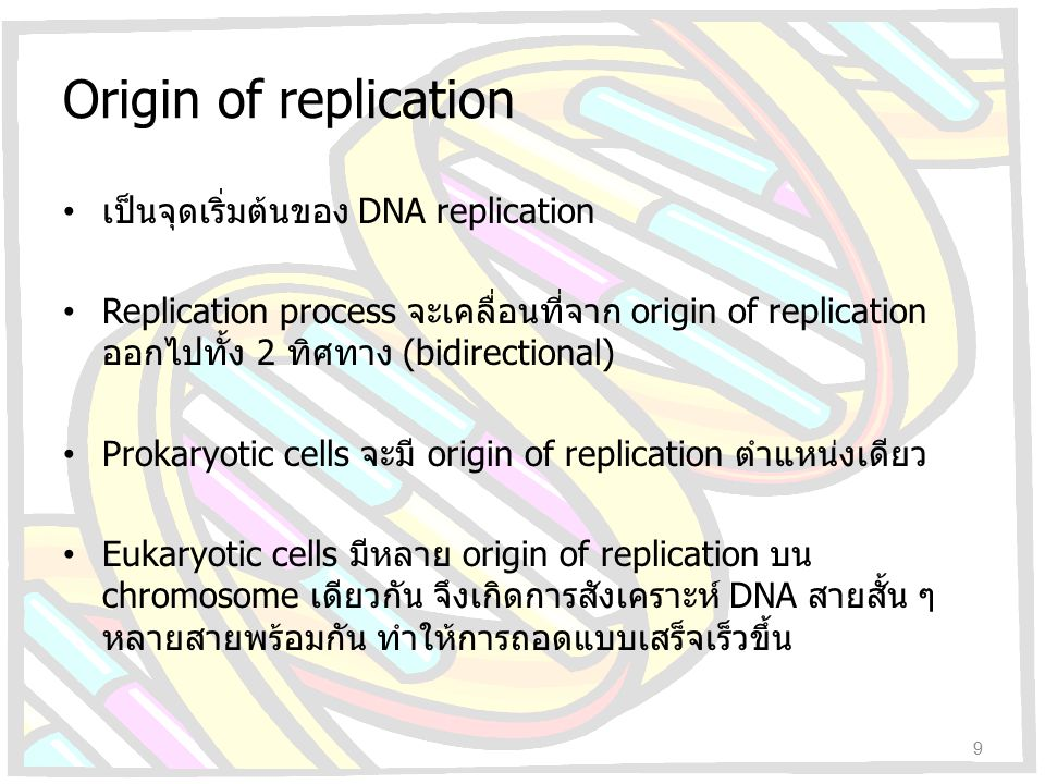 DNA replication Unwinding of DNA helix : helicase Relaxation of supercoiled DNA : DNA gyrase RNA primer synthesis : primase DNA synthesis : DNA polymerase III – Leading strand – Lagging strand Removal of RNA primer & filling gaps : DNA polymerase I Sealing of DNA chain : DNA ligase 10