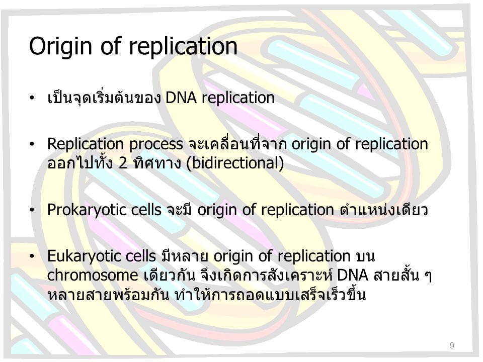 Origin of replication เป็นจุดเริ่มต้นของ DNA replication Replication process จะเคลื่อนที่จาก origin of replication ออกไปทั้ง 2 ทิศทาง (bidirectional)