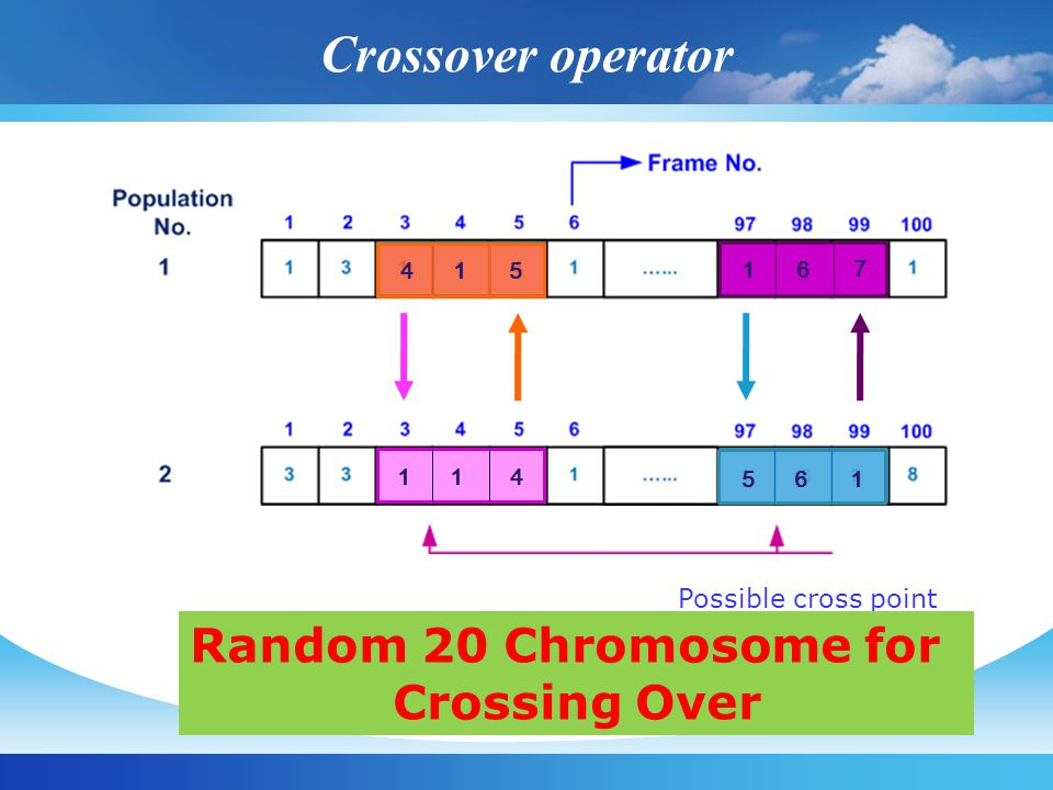 Crossover operator Possible cross point 114415 16 7 561 Random 20 Chromosome for Crossing Over