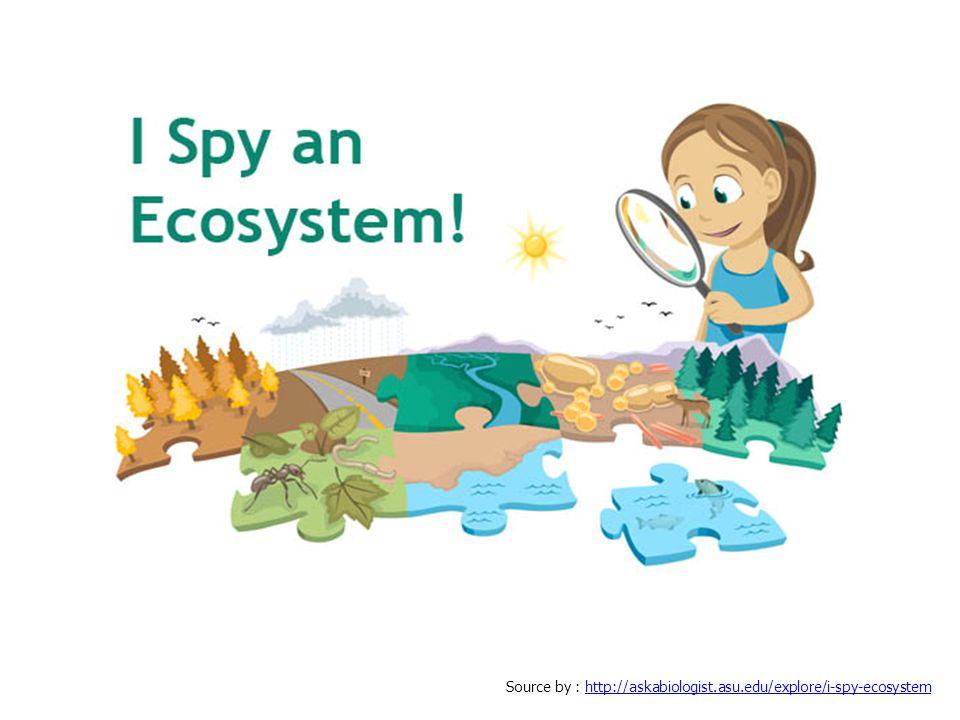 นักศึกษาเข้าใจความหมายของประโยค Ecology is our future อย่างไรบ้าง ให้อธิบายมาพอสังเขป (1 หน้า A4) http://www.youtube.com/watch?v=Ac1UV30jt_U