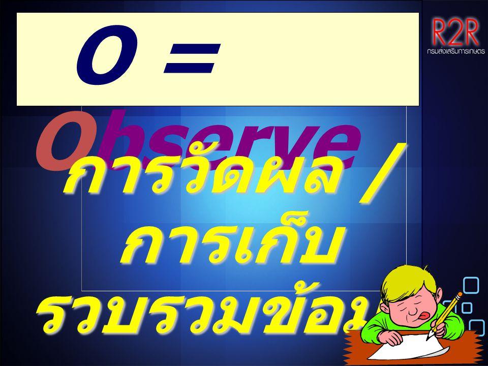 O = Observe การวัดผล / การเก็บ รวบรวมข้อมูล