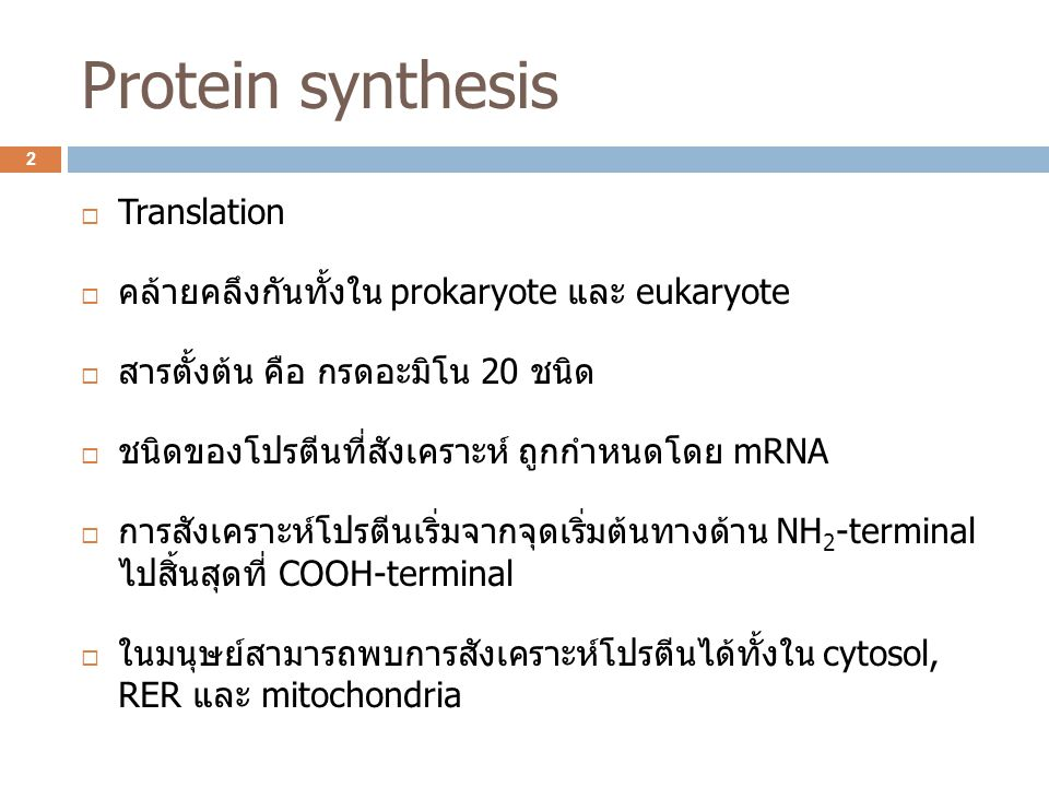Protein synthesis  Translation  คล้ายคลึงกันทั้งใน prokaryote และ eukaryote  สารตั้งต้น คือ กรดอะมิโน 20 ชนิด  ชนิดของโปรตีนที่สังเคราะห์ ถูกกำหนด
