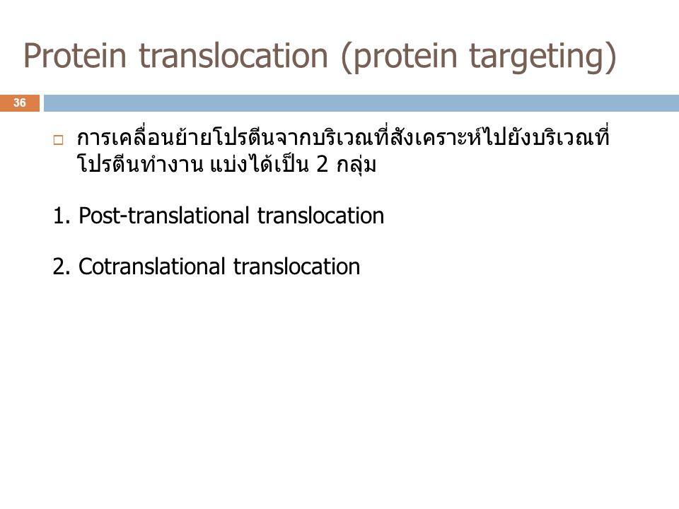 Protein translocation (protein targeting)  การเคลื่อนย้ายโปรตีนจากบริเวณที่สังเคราะห์ไปยังบริเวณที่ โปรตีนทำงาน แบ่งได้เป็น 2 กลุ่ม 1. Post-translati