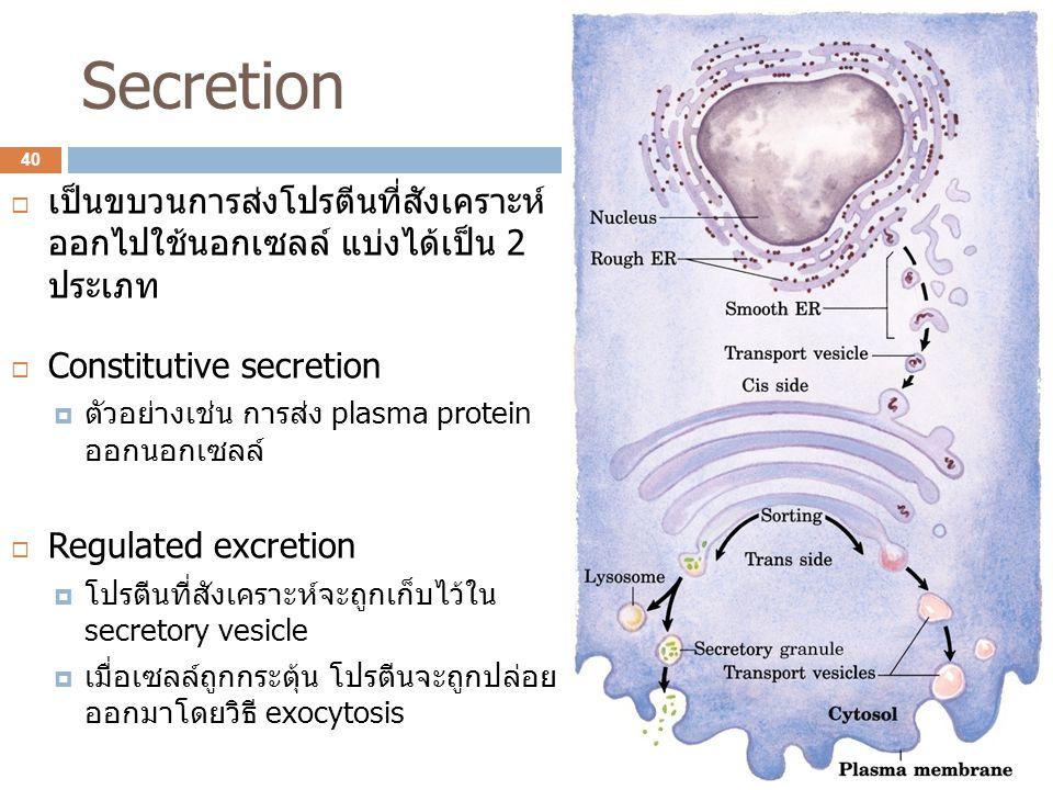 Secretion  เป็นขบวนการส่งโปรตีนที่สังเคราะห์ ออกไปใช้นอกเซลล์ แบ่งได้เป็น 2 ประเภท  Constitutive secretion  ตัวอย่างเช่น การส่ง plasma protein ออกน