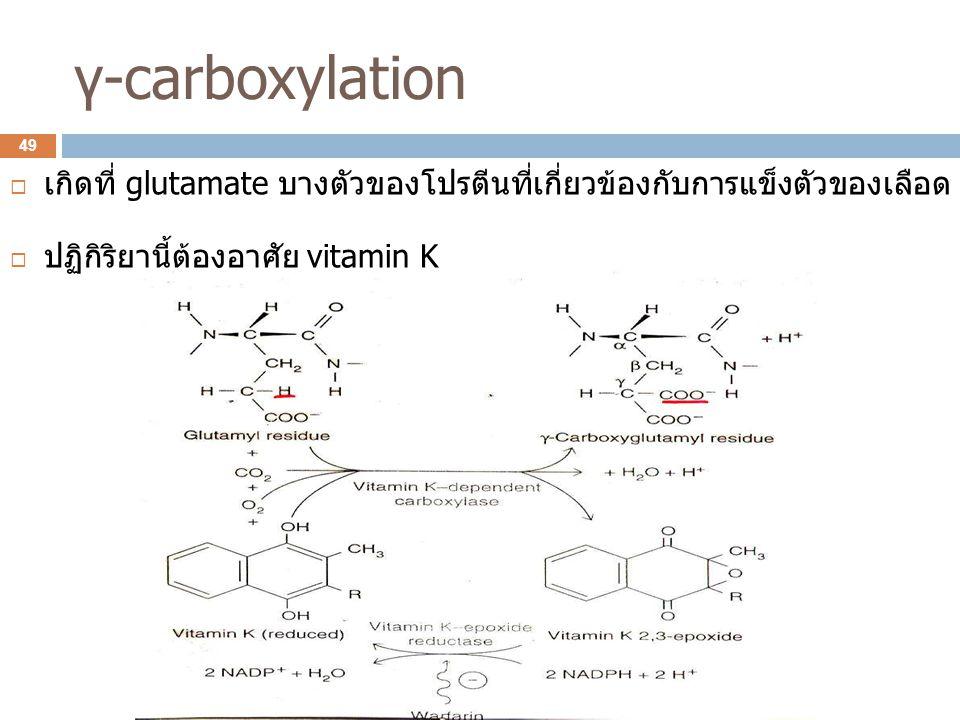 γ-carboxylation  เกิดที่ glutamate บางตัวของโปรตีนที่เกี่ยวข้องกับการแข็งตัวของเลือด  ปฏิกิริยานี้ต้องอาศัย vitamin K 49