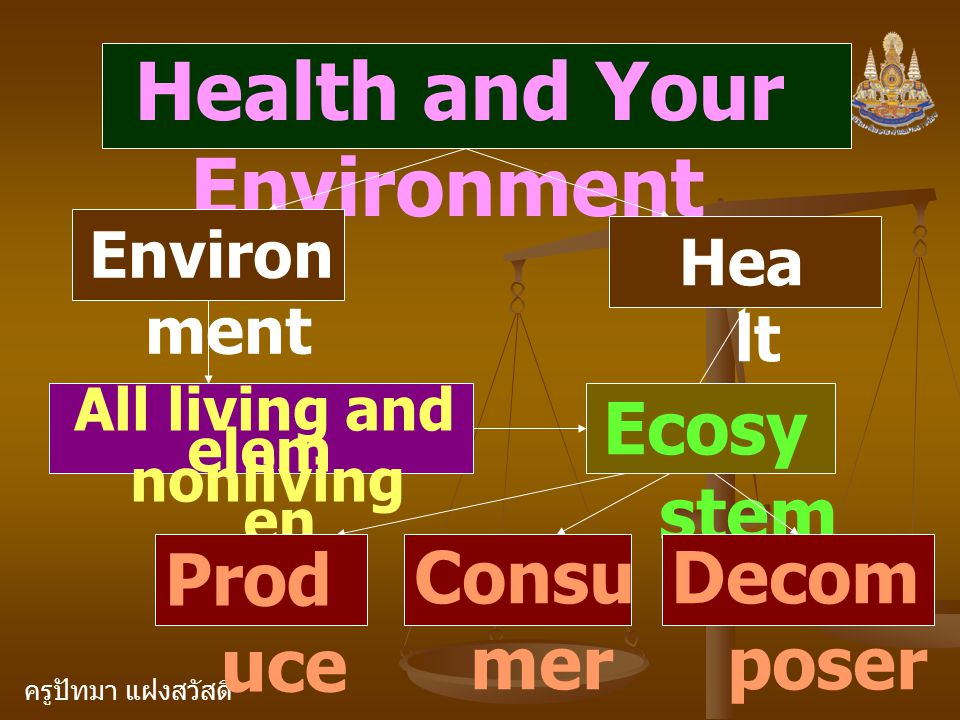 ครูปัทมา แฝงสวัสดิ์ Health and Your Environment Environ ment Hea lt h All living and nonliving elem en ts Ecosy stem Prod uce r Consu mer Decom poser