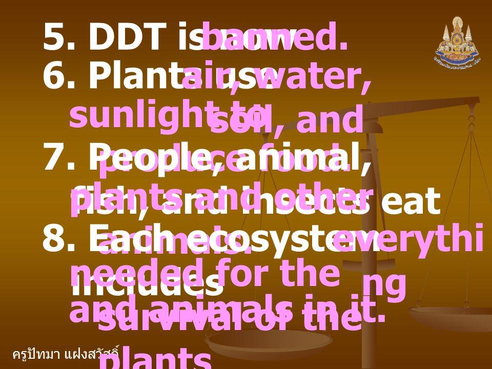 ครูปัทมา แฝงสวัสดิ์ 5. DDT is nowbanned. 6. Plants useair, water, soil, and sunlight to produce food. 7. People, animal, fish, and insects eat plants