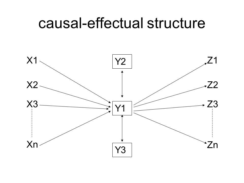 causal-effectual structure Y1 X1 X2 X3 Xn Z1 Zn Z3 Z2 Y2 Y3