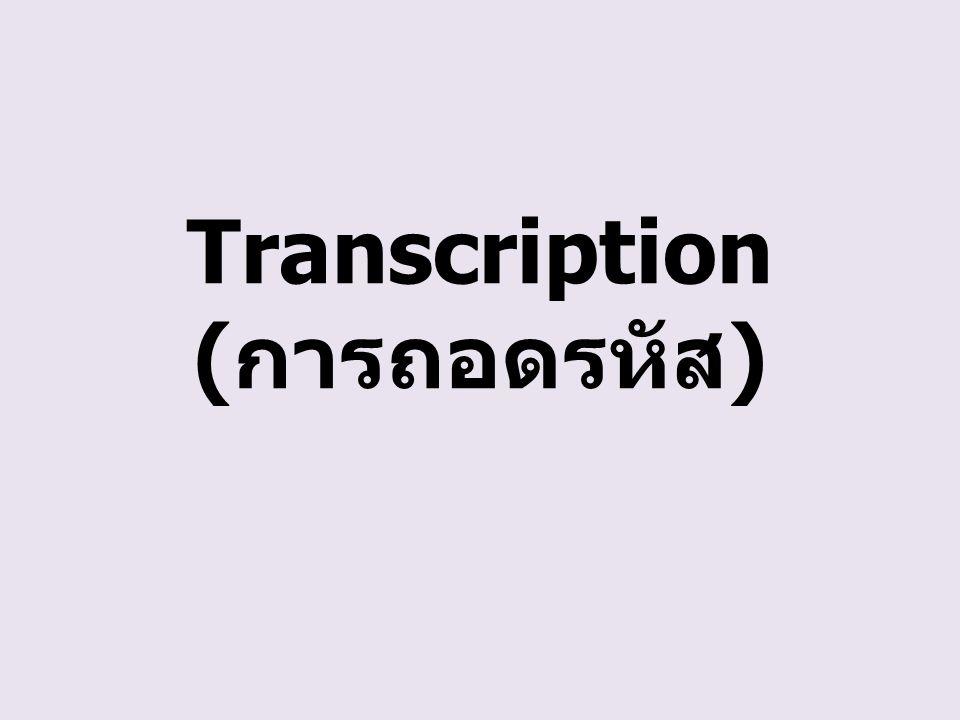 Transcription ( การถอดรหัส )