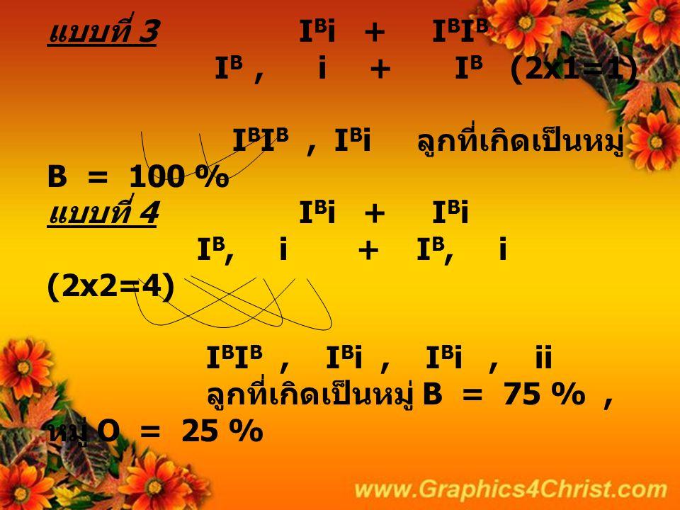 แบบที่ 3 I B i + I B I B I B, i + I B (2x1=1) I B I B, I B i ลูกที่เกิดเป็นหมู่ B = 100 % แบบที่ 4 I B i + I B i I B, i + I B, i (2x2=4) I B I B, I B