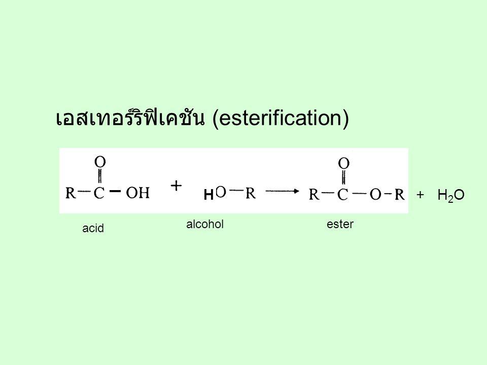 H + H 2 O acid alcoholester เอสเทอร์ริฟิเคชัน (esterification)