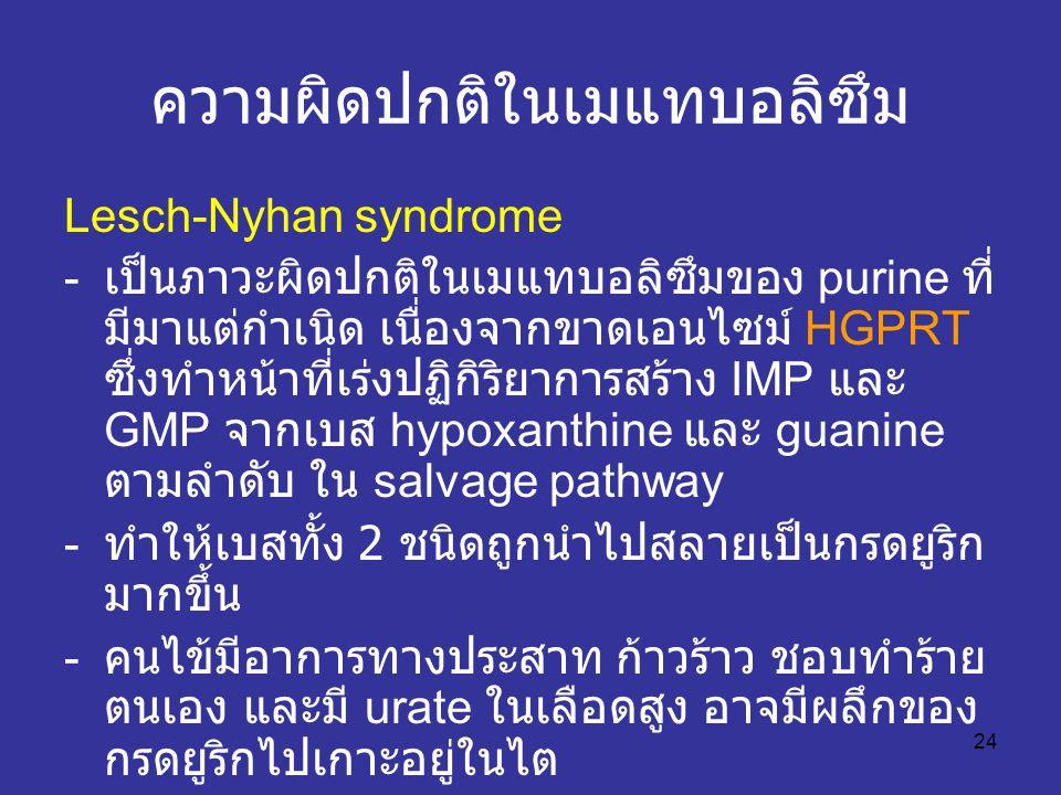 24 ความผิดปกติในเมแทบอลิซึม Lesch-Nyhan syndrome - เป็นภาวะผิดปกติในเมแทบอลิซึมของ purine ที่ มีมาแต่กำเนิด เนื่องจากขาดเอนไซม์ HGPRT ซึ่งทำหน้าที่เร่งปฏิกิริยาการสร้าง IMP และ GMP จากเบส hypoxanthine และ guanine ตามลำดับ ใน salvage pathway - ทำให้เบสทั้ง 2 ชนิดถูกนำไปสลายเป็นกรดยูริก มากขึ้น - คนไข้มีอาการทางประสาท ก้าวร้าว ชอบทำร้าย ตนเอง และมี urate ในเลือดสูง อาจมีผลึกของ กรดยูริกไปเกาะอยู่ในไต ทำให้ไตวาย