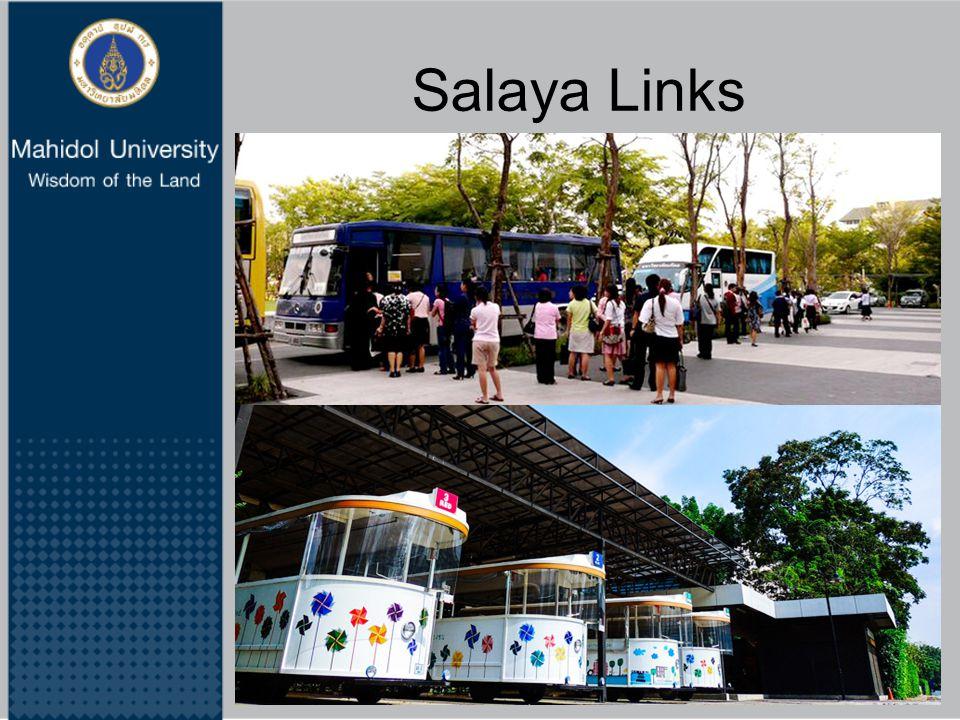 Salaya Links