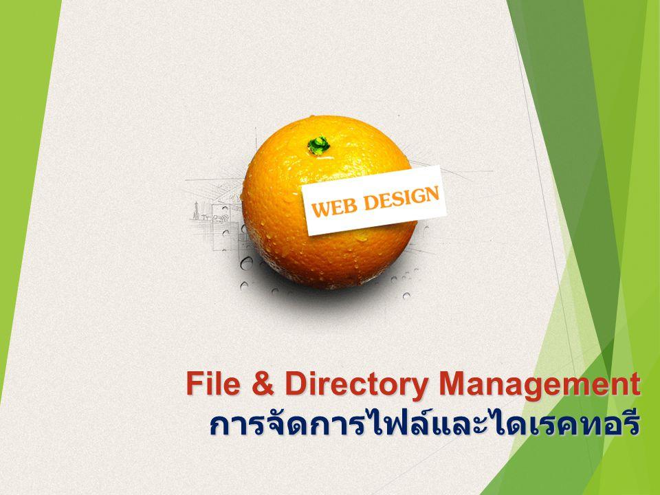 File & Directory Management การจัดการไฟล์และไดเรคทอรี