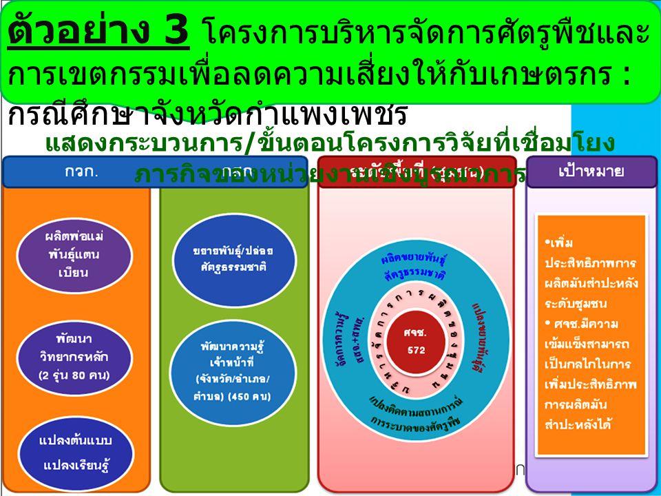ตัวอย่าง 3 โครงการบริหารจัดการศัตรูพืชและ การเขตกรรมเพื่อลดความเสี่ยงให้กับเกษตรกร : กรณีศึกษาจังหวัดกำแพงเพชร แสดงกระบวนการ / ขั้นตอนโครงการวิจัยที่เ
