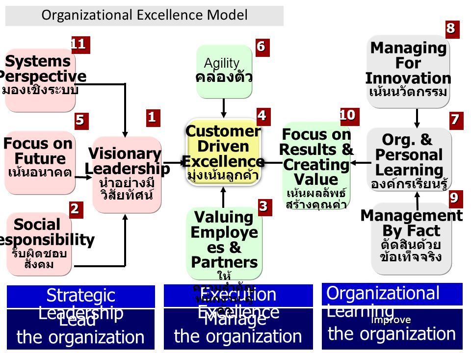 Lead the organization Manage the organization Improve Strategic Leadership Execution Excellence Organizational Learning Customer Driven Excellence มุ่