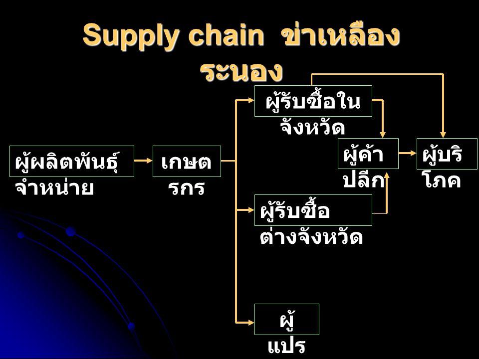 Supply chain ข่าเหลือง ระนอง ผู้ผลิตพันธุ์ จำหน่าย เกษต รกร ผู้รับซื้อใน จังหวัด ผู้รับซื้อ ต่างจังหวัด ผู้ แปร รูป ผู้ค้า ปลีก ผู้บริ โภค
