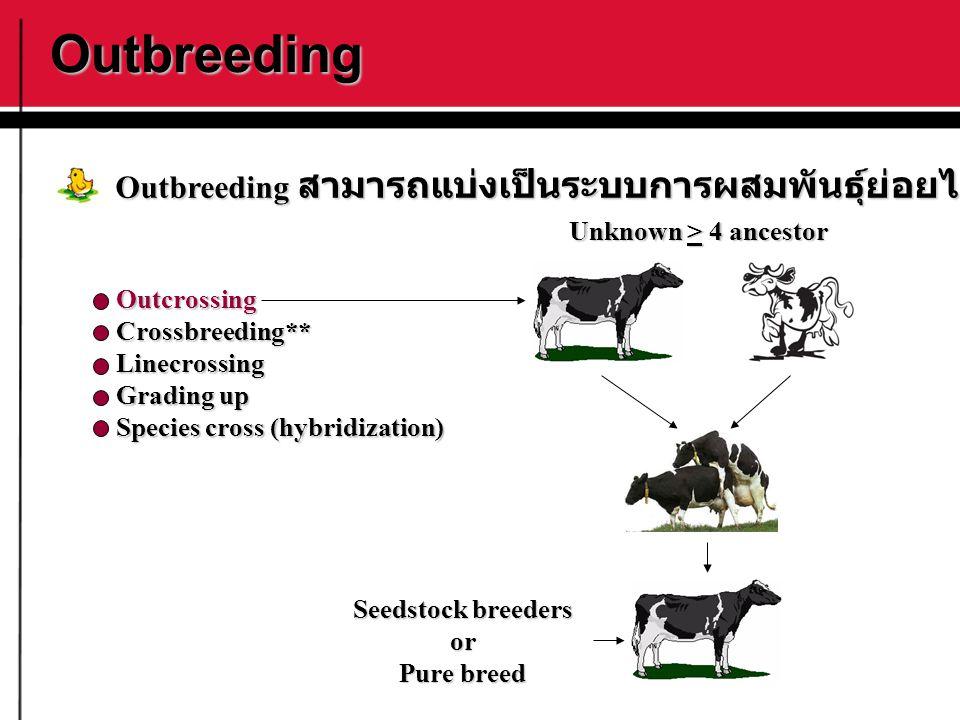 Outbreeding OutcrossingCrossbreeding**Linecrossing Grading up Species cross (hybridization) Outbreeding สามารถแบ่งเป็นระบบการผสมพันธุ์ย่อยได้ดังนี้ Se