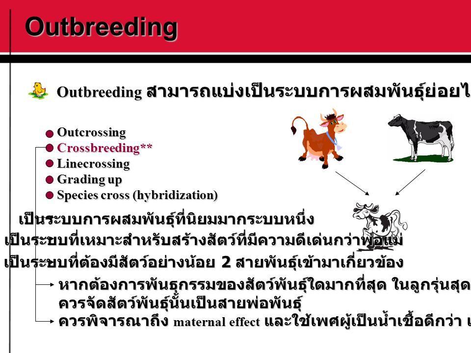 Outbreeding OutcrossingCrossbreeding**Linecrossing Grading up Species cross (hybridization) Outbreeding สามารถแบ่งเป็นระบบการผสมพันธุ์ย่อยได้ดังนี้ เป
