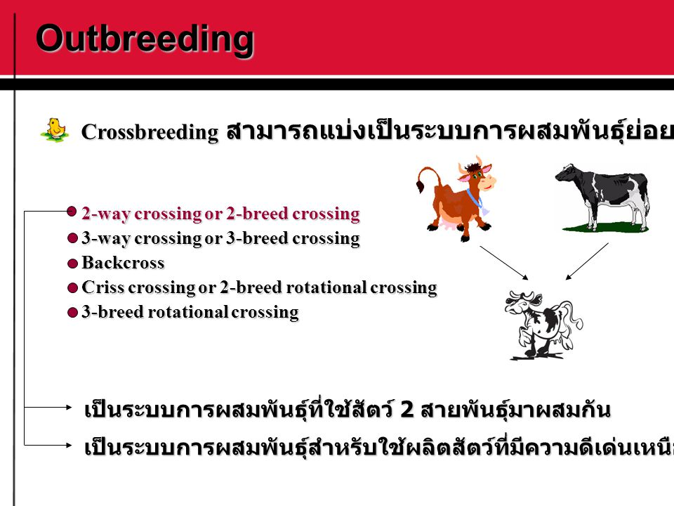 Outbreeding 2-way crossing or 2-breed crossing 3-way crossing or 3-breed crossing Backcross Criss crossing or 2-breed rotational crossing 3-breed rota