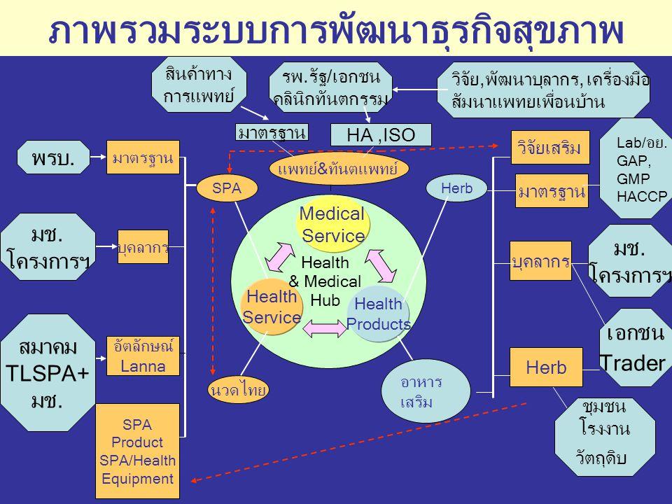 กรอบแนวคิดแผนงานการปฏิบัติงานของธุรกิจสุขภาพ ปี 2547 มูลค่าธุรกิจ สุขภาพ ณ 30 ก.ย.