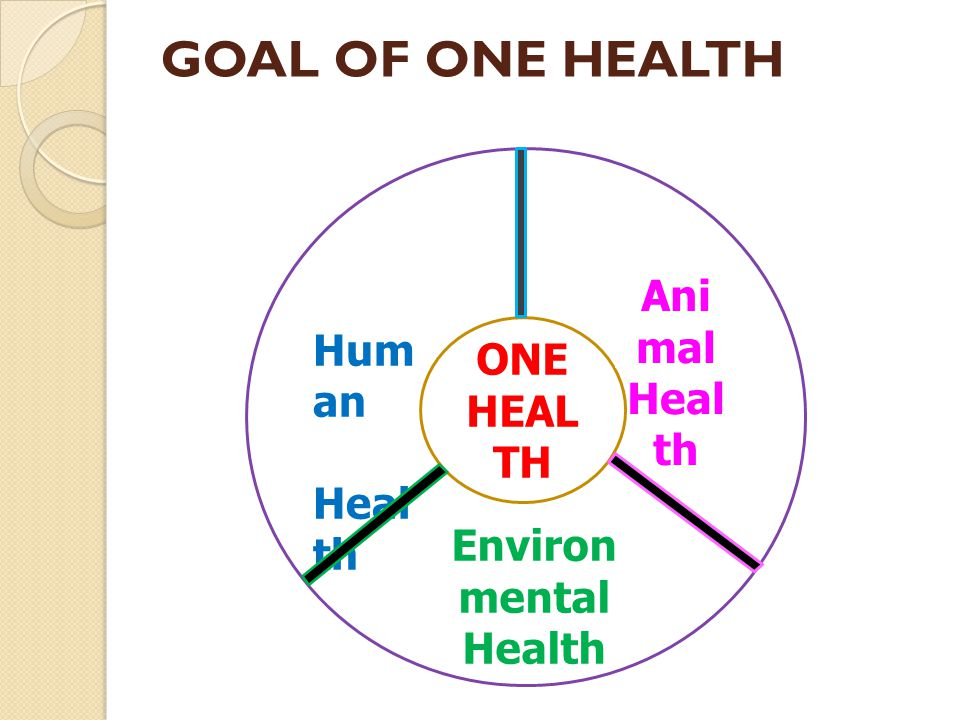 GOAL OF ONE HEALTH ONE HEAL TH Hum an Heal th Ani mal Heal th Environ mental Health