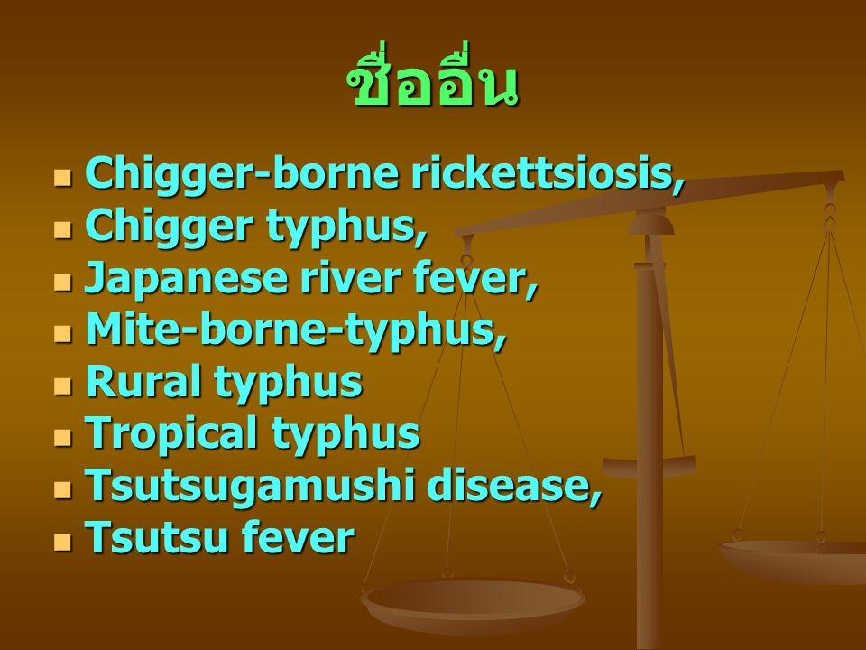 ชื่ออื่น Chigger-borne rickettsiosis, Chigger-borne rickettsiosis, Chigger typhus, Chigger typhus, Japanese river fever, Japanese river fever, Mite-bo
