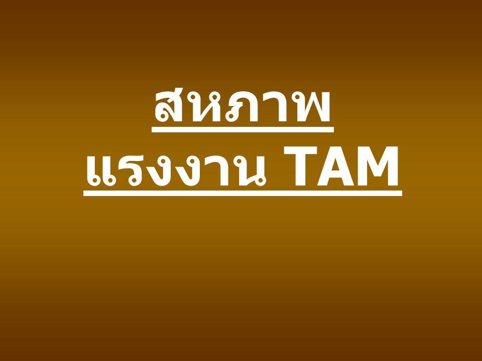 สหภาพ แรงงาน TAM