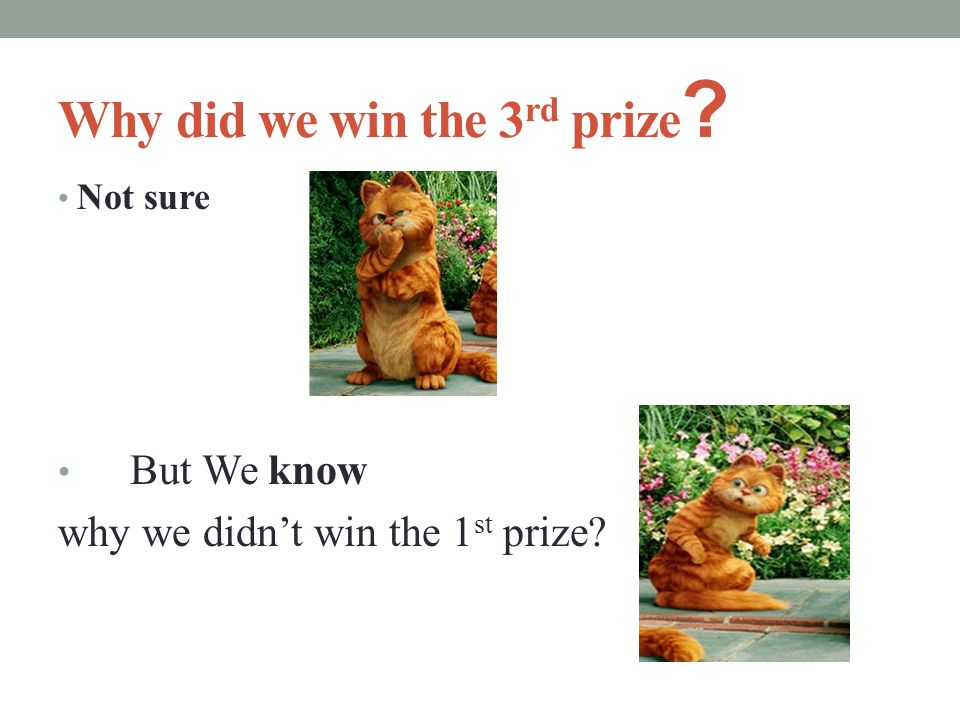 Why did we win the 3 rd prize ? Not sure But We know why we didn't win the 1 st prize?