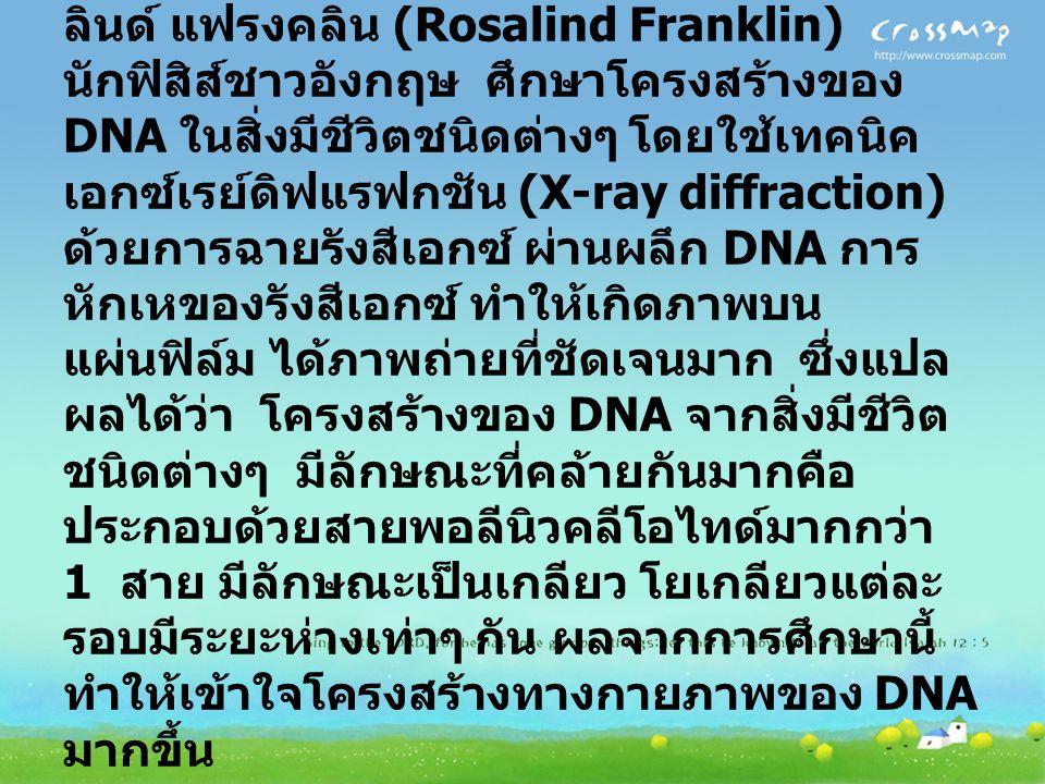 โครงสร้างของ DNA ปี พ. ศ. 2493-2494 มัวริส เอช เอฟ วิลคินส์ (Maurice H.F. Wilkins) และโรซา ลินด์ แฟรงคลิน (Rosalind Franklin) นักฟิสิส์ชาวอังกฤษ ศึกษา