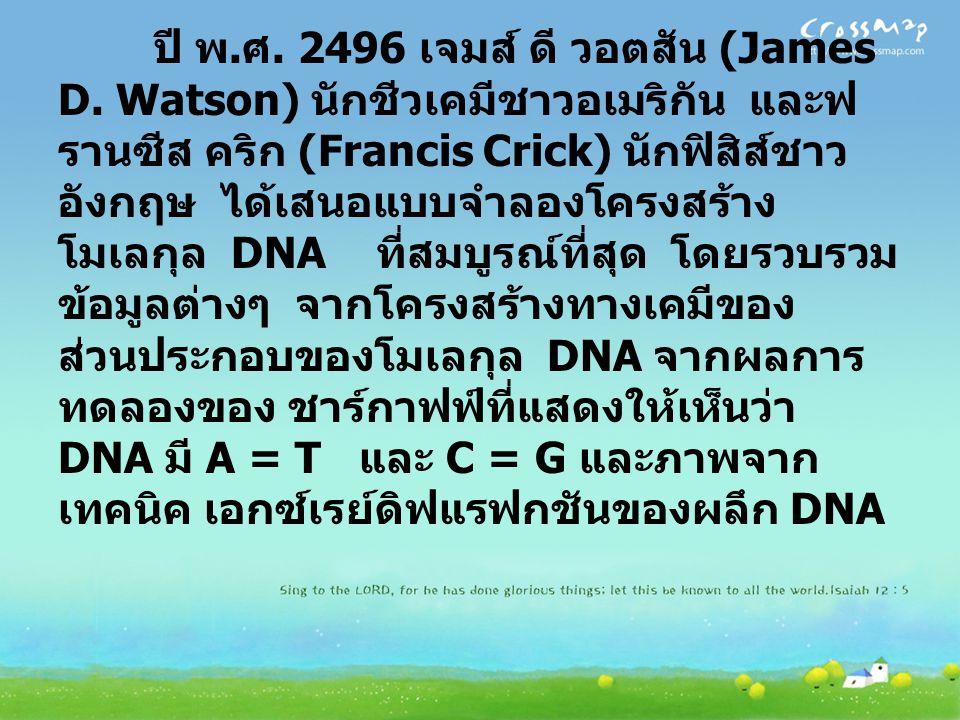 ปี พ. ศ. 2496 เจมส์ ดี วอตสัน (James D. Watson) นักชีวเคมีชาวอเมริกัน และฟ รานซีส คริก (Francis Crick) นักฟิสิส์ชาว อังกฤษ ได้เสนอแบบจำลองโครงสร้าง โม