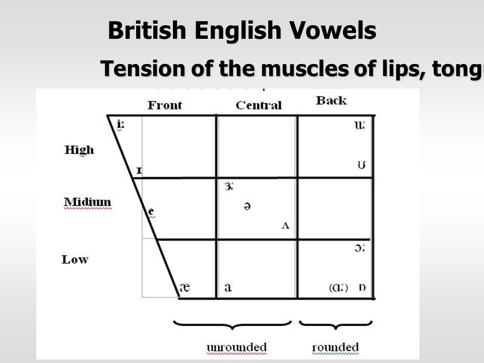 British English Vowels Tension of the muscles of lips, tongue and face