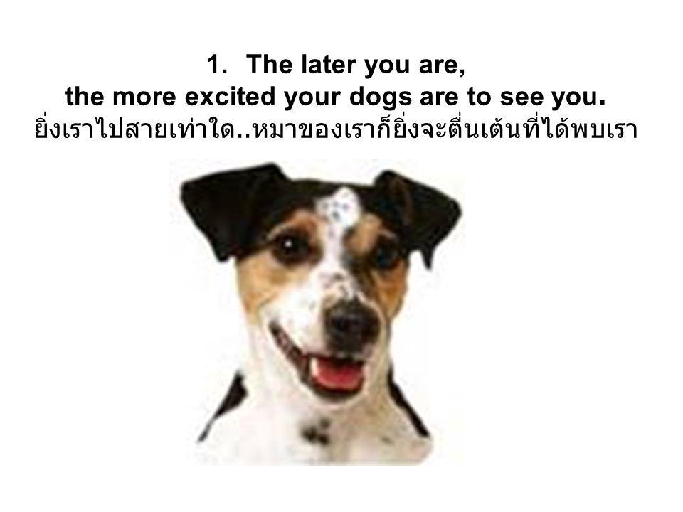 13. Dogs like to ride in the back of a pickup truck. หมาเขาจะชอบนั่งรถปิ๊กอัพตอนหลังมากๆเลย