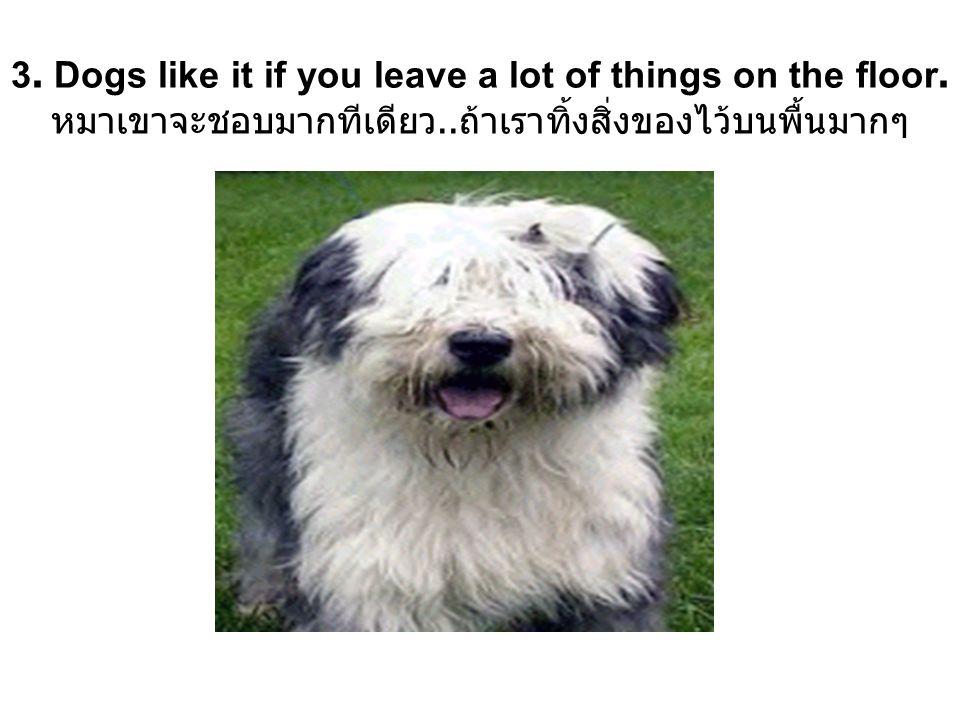4. A dog s parents never visit. เลี้ยงหมา..ไม่ต้องมีพ่อแม่หมามาเยี่ยม