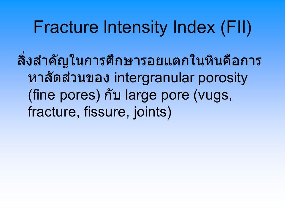 Fracture Intensity Index (FII) สิ่งสำคัญในการศึกษารอยแตกในหินคือการ หาสัดส่วนของ intergranular porosity (fine pores) กับ large pore (vugs, fracture, fissure, joints)