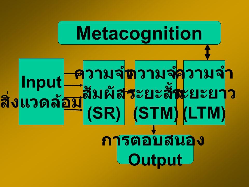 Information Processing Theory Input Output encoding decoding เข้ารหัส ถอดรหัส Mem ory