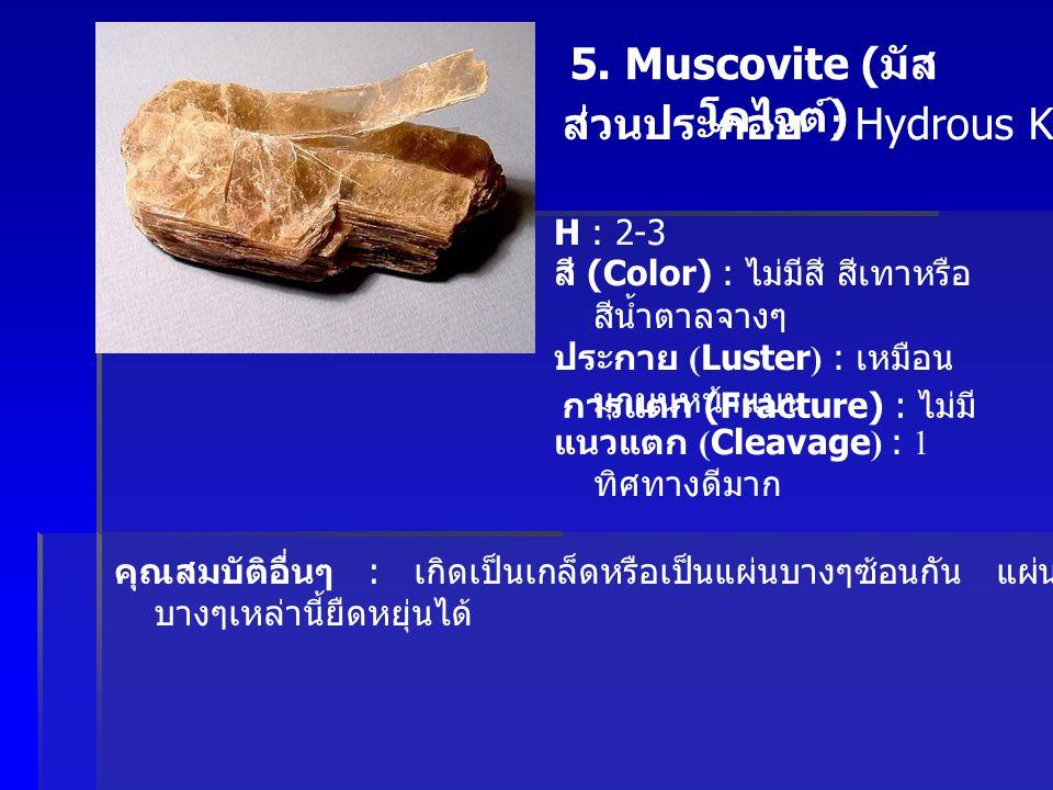 5. Muscovite ( มัส โคไวต์ ) ส่วนประกอบ : Hydrous K, Al Silicate H : 2-3 สี (Color) : ไม่มีสี สีเทาหรือ สีน้ำตาลจางๆ ประกาย (Luster) : เหมือน มุกบนหน้า