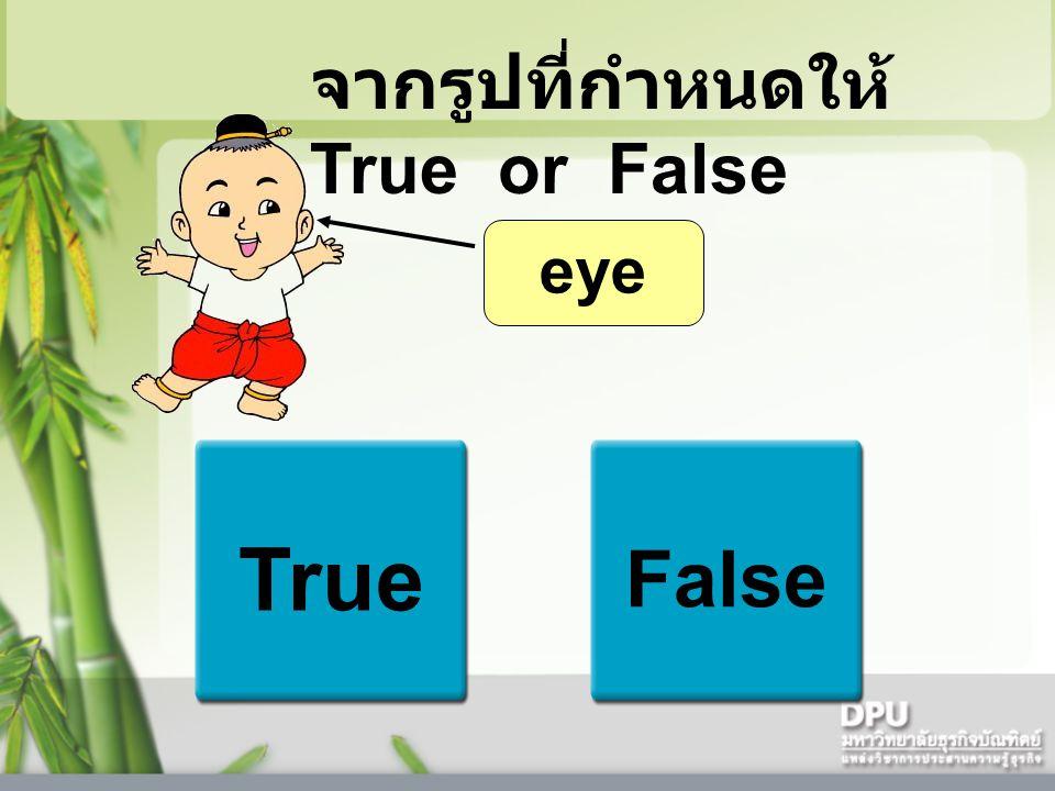True False eye จากรูปที่กำหนดให้ True or False