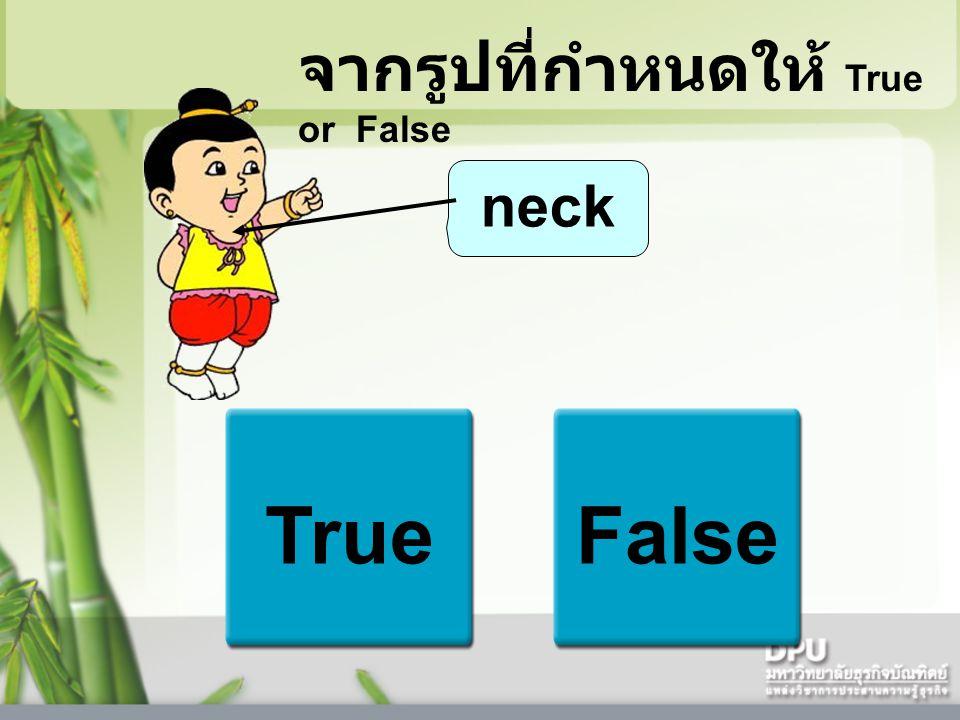 neck TrueFalse