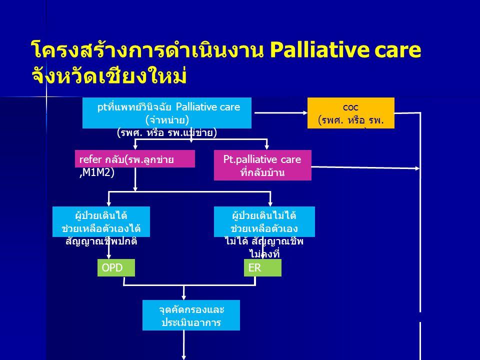 โครงสร้างการดำเนินงาน Palliative care จังหวัดเชียงใหม่ pt ที่แพทย์วินิจฉัย Palliative care ( จำหน่าย ) ( รพศ.
