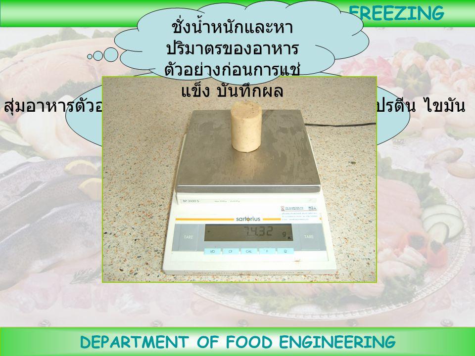 DEPARTMENT OF FOOD ENGINEERING FREEZING ตัดอาหารตัวอย่างให้มีขนาดตามต้องการ