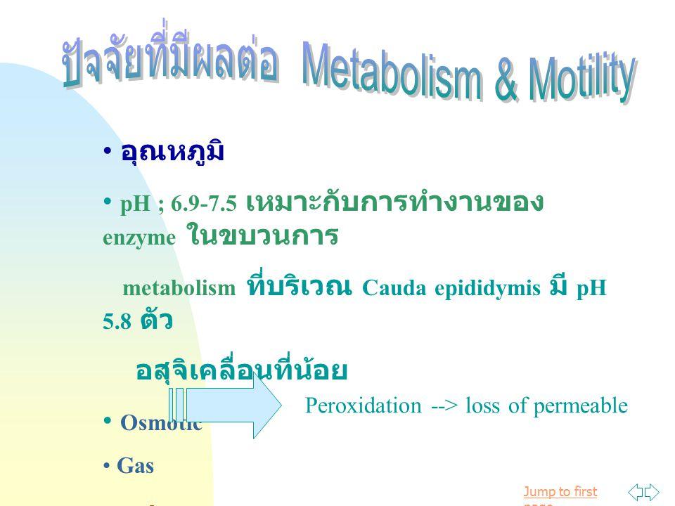 Jump to first page อุณหภูมิ pH ; 6.9-7.5 เหมาะกับการทำงานของ enzyme ในขบวนการ metabolism ที่บริเวณ Cauda epididymis มี pH 5.8 ตัว อสุจิเคลื่อนที่น้อย