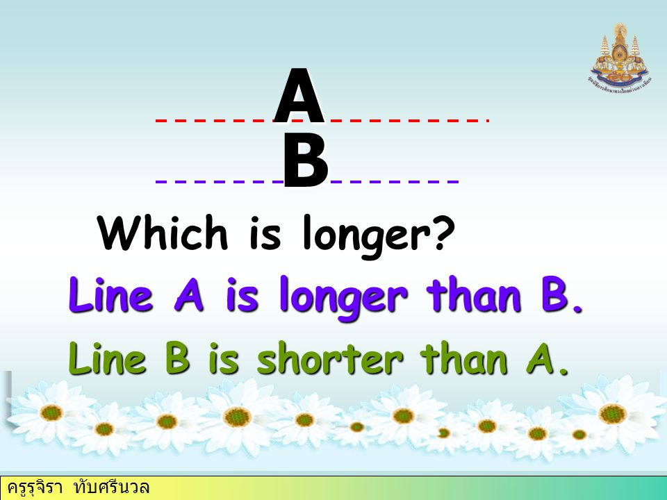 ครูรุจิรา ทับศรีนวล Which is longer A B Line A is longer than B. Line B is shorter than A.
