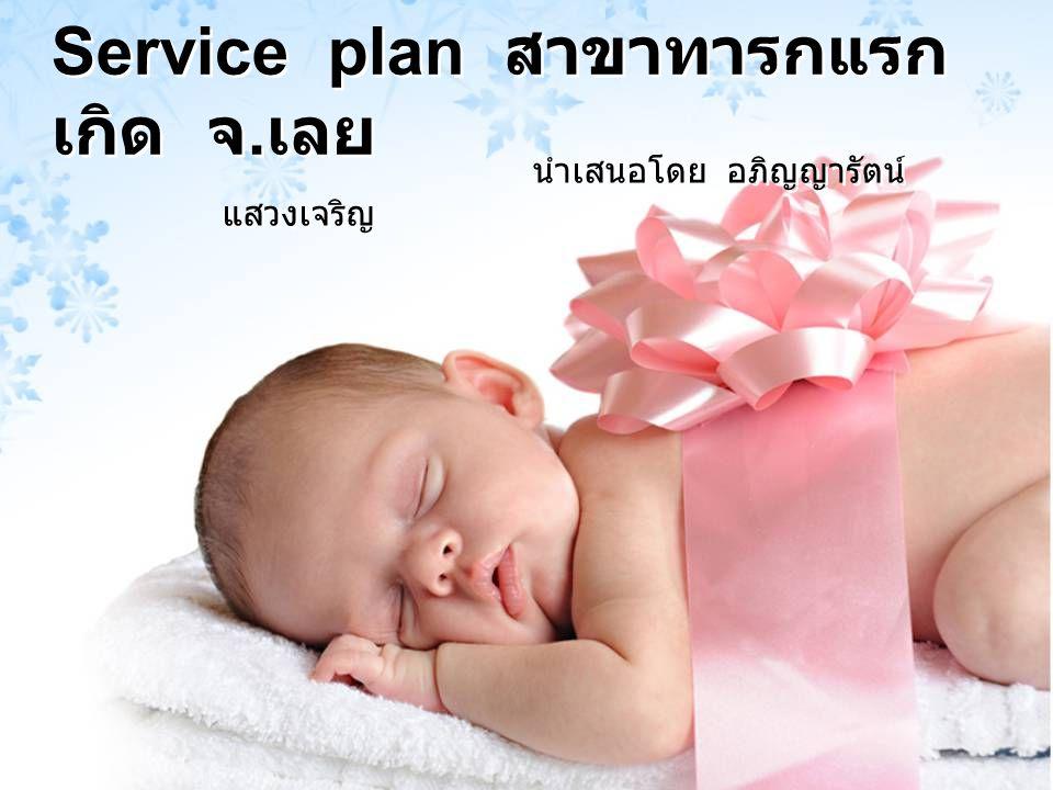 Service plan สาขาทารกแรก เกิด จ. เลย นำเสนอโดย อภิญญารัตน์ แสวงเจริญ