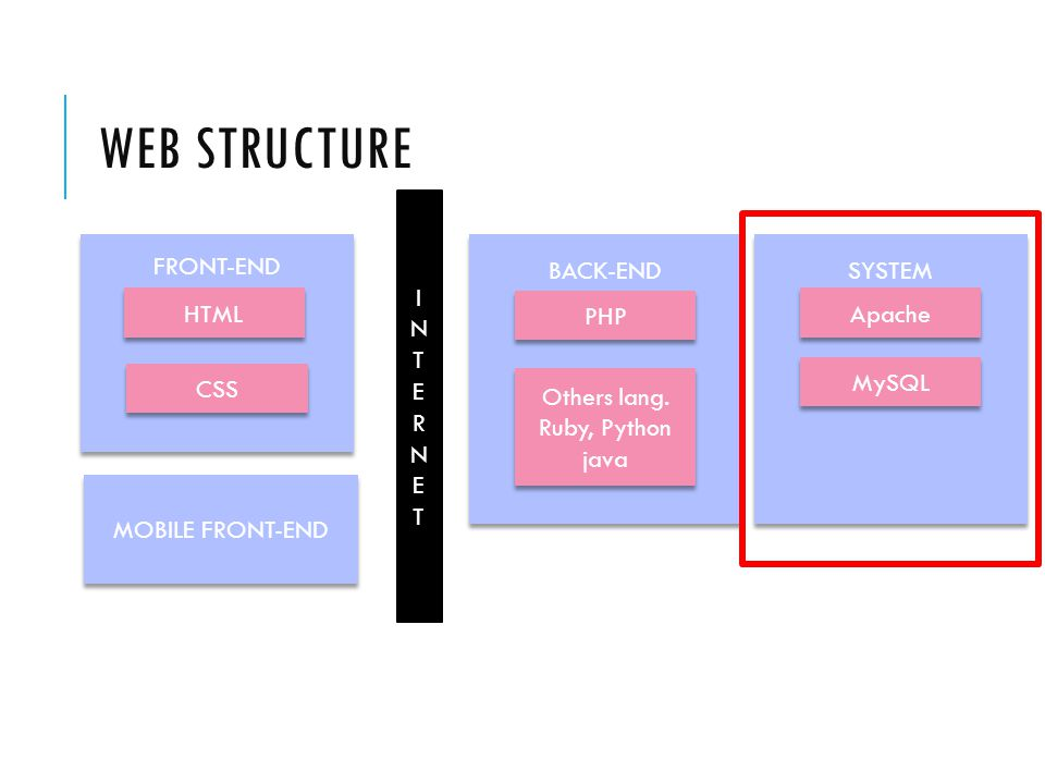 WEB STRUCTURE FRONT-END BACK-END SYSTEM MOBILE FRONT-END HTML CSS PHP Others lang.
